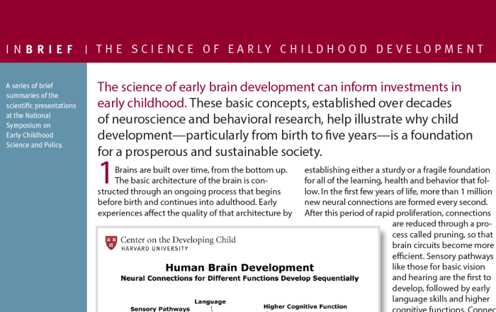 Image for InBrief: The Science of Early Childhood Development