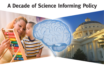 Image for A Decade of Science Informing Policy: The Story of the National Scientific Council on the Developing Child